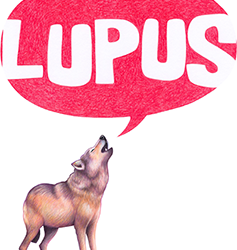 Brambly Hedge joins up with Lupus films
